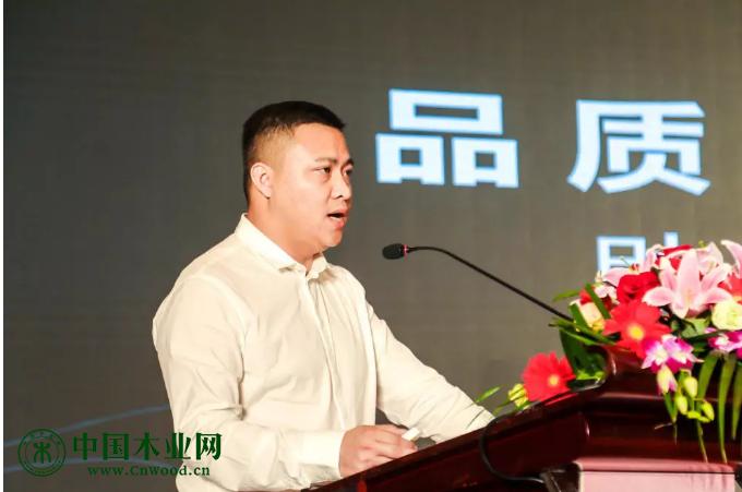 金隆木业集团营销总监 杨迪
