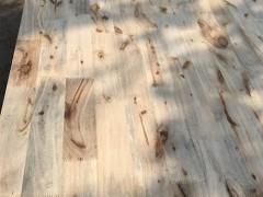 供应香樟木指接板