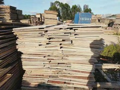 长期供应桉木建筑模板
