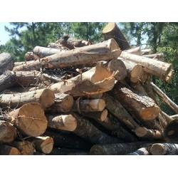 大量收购周边杂原木