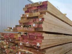 德容木业-辐射松烘干材