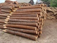 嘉川木业-杉木打桩木