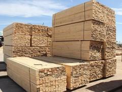 中和木业-辐射松建筑木方