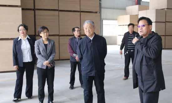 国家林业产业协会领导及国内知名专家到覃塘区考察木材加工产业