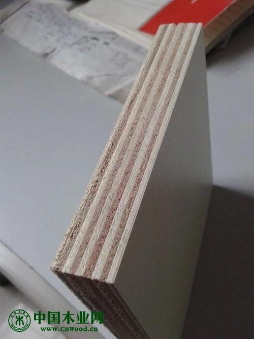 中国板材十大品牌·中木樵夫-多层板、细木工板