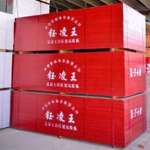 坦桑尼亚建筑专用竹胶板 厂家定制生产 防腐耐磨