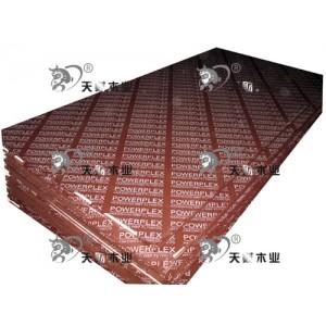 天财木业-建筑模板系列