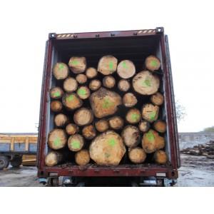 供应德国进口云杉木