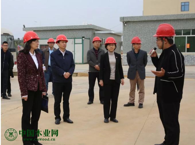 考察组到甘化园区广西鲁桥新材料有限公司考察