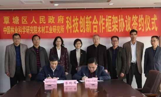 中国林业科学研究院木材工业研究所考察组到覃塘区考察