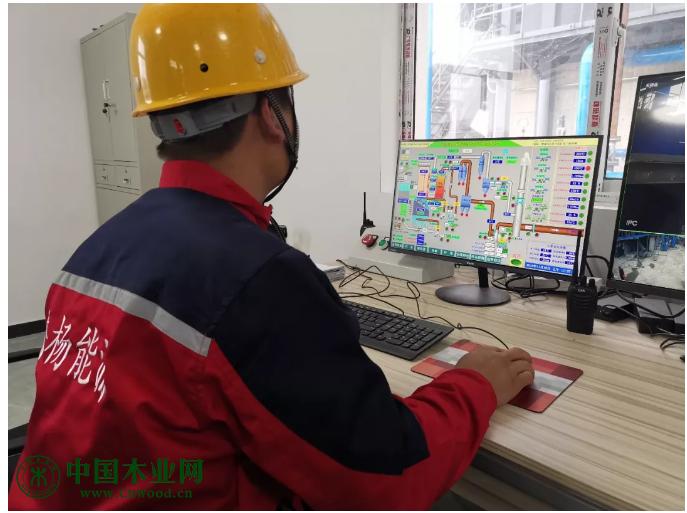兰氏木业生物质气化项目正式点火运行