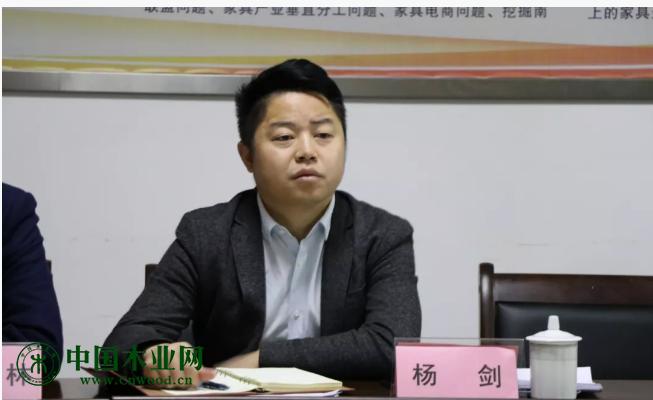 区家具协会执行秘书长杨剑