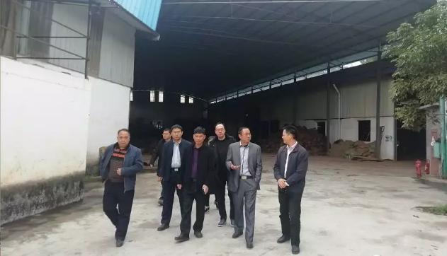 南宁安庆商会会长一行赴天峨县考察木业生产情况