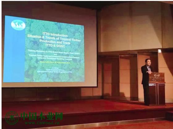 国际热带木材组织市场与经济分析师李强先生