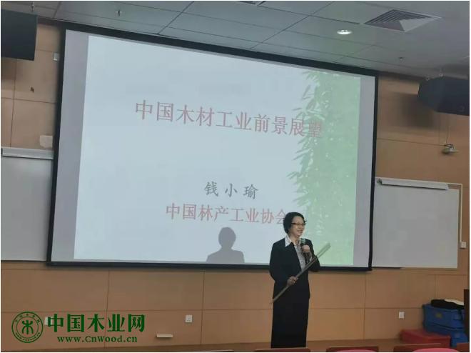 中国林产工业协会副会长钱小瑜老师