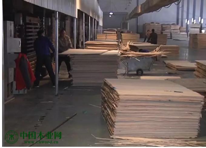 丰县开展木材行业安全生产大检查