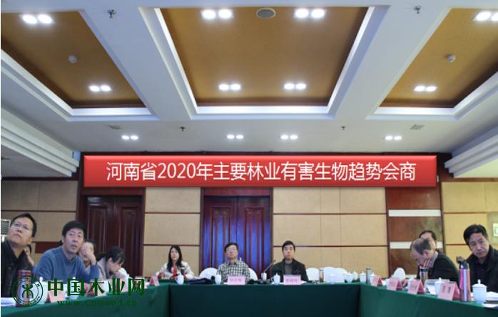 河南省召开2020年主要林业有害生物发生趋势会商会