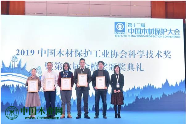 姚玉萍总工程师为2019年中国木材保护工业协会科学技术奖二等奖颁发荣誉证书