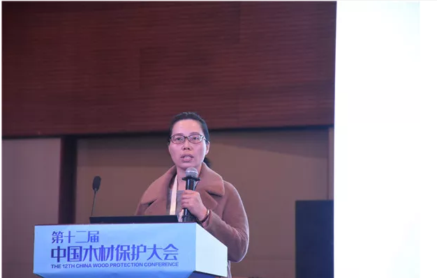 浙江农林大学工程学院教授孙芳利分享《竹材霉变及防霉研究进展》