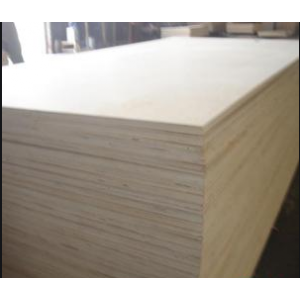 杨木2.6单板