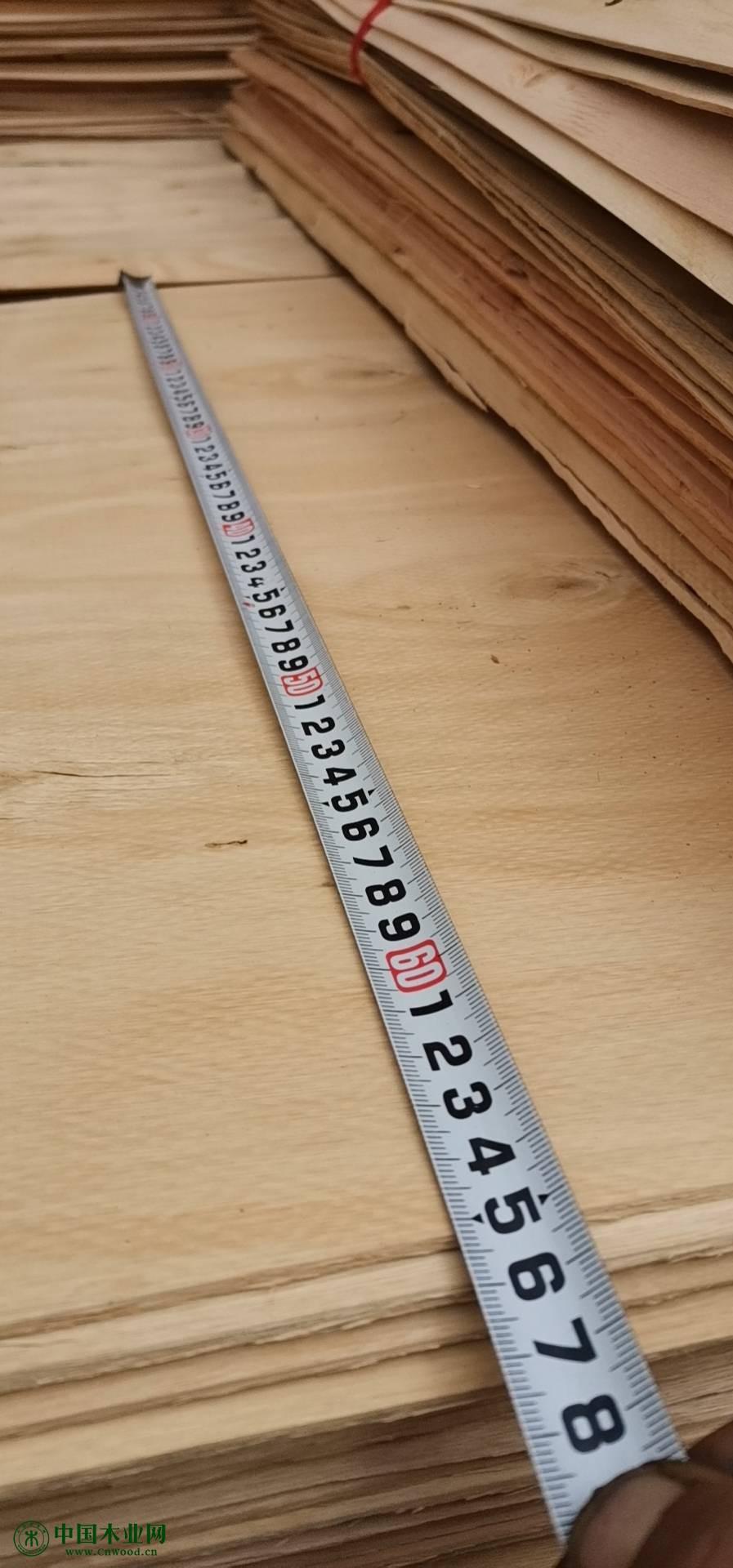 桉木单板板皮