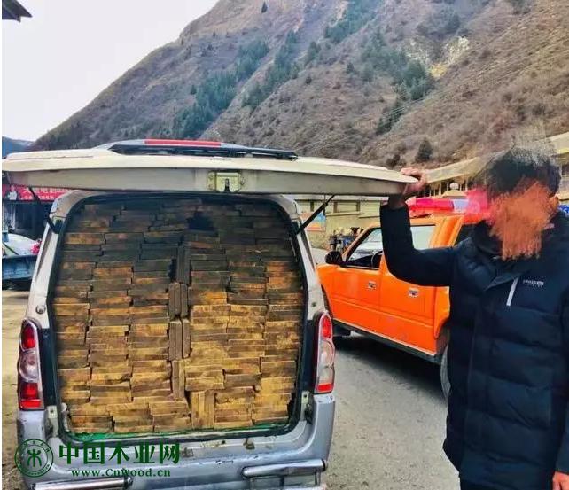胆大!新龙一男子非法运输木材被查获