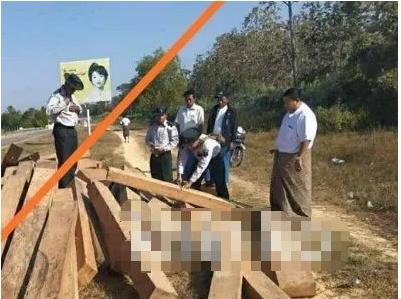 缅甸木材走私车一路狂飙逃出包围圈,警察叹:太快了!