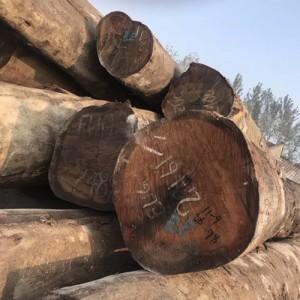 供应精品楠木(EUG)