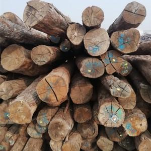 欧橡原木低价处理