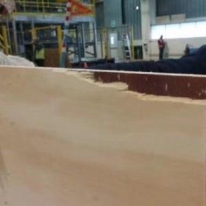 全松木胶合板、酚醛胶、下线板低价处理