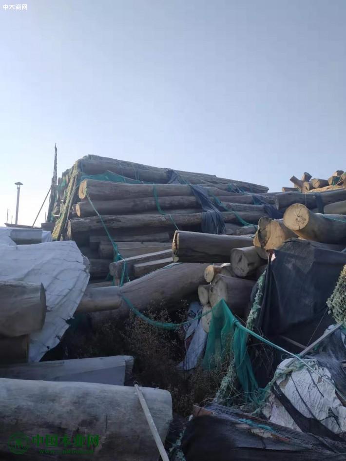 低价处理花梨木原木