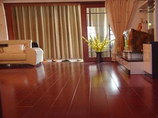 实木地板和强化地板的区别?