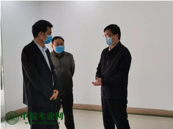广西岑溪市市长莅临三威林产岑溪公司调研指导复工复产工作