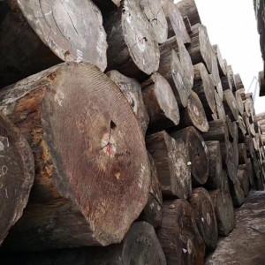 供应各种大板 、原木、 毛板