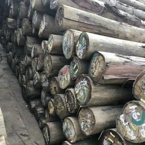 销售剥皮桉木