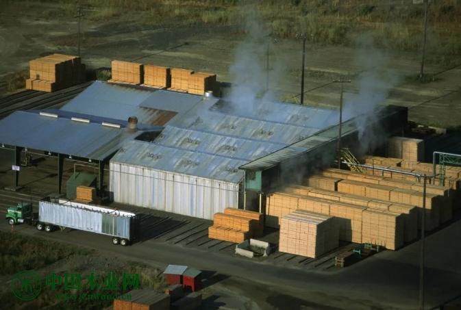 1月份美国西部锯木厂软木产量下降2.35%