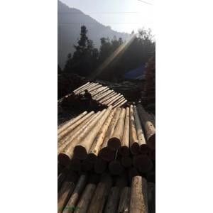 大量提供香杉木,需要的老板联系15285269213