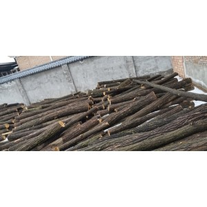 刺槐直径13到20长度2.4米
