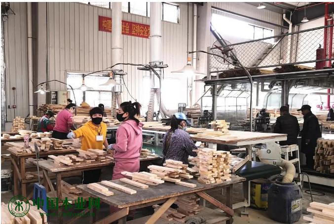 中林集团江苏聚成木业有限公司