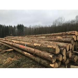 欧洲云杉原木期货