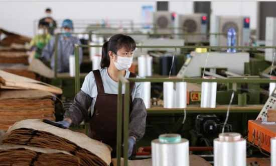 广西鹿寨:企业有序复工复产 木材木料加工忙