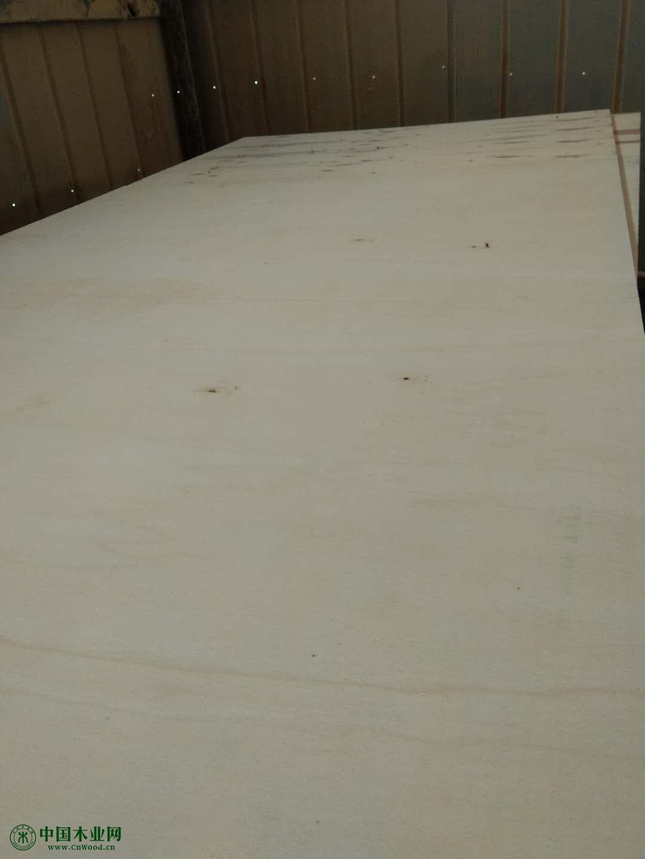 供应门套板 松木白皮 贴面防水板 以及各种板心各种类型生态板