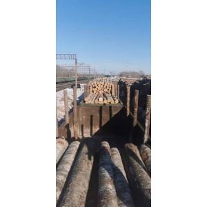 俄罗斯进口一等桦木原木