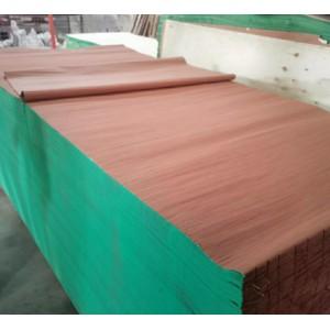染色克隆科技木木皮