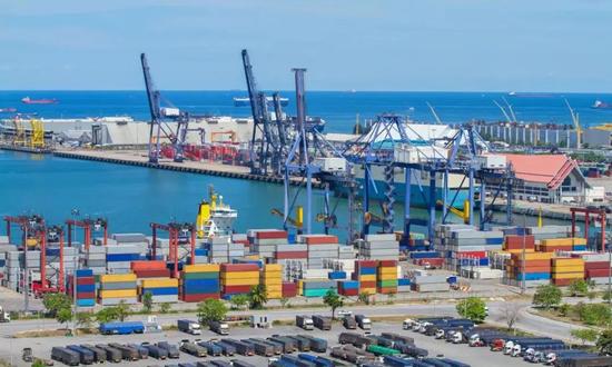 海运费不降反升,木材进口贸易成本不断增加!
