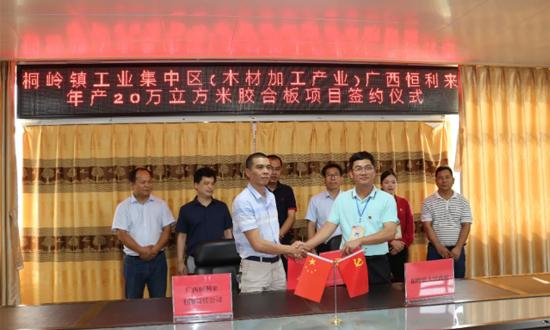 广西恒利来年产20万立方米胶合板项目签约暨开工仪式在桐岭镇举行