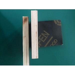 覆膜建筑板 覆膜板的价格