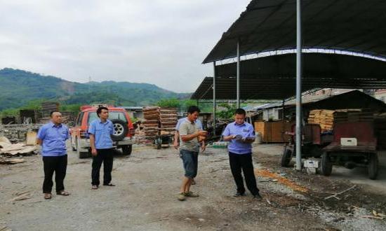 广西田林县扎实开展木材加工企业专项整治工作
