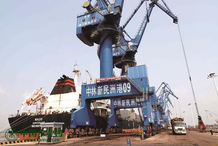 新民洲港贸易实现逆势上扬
