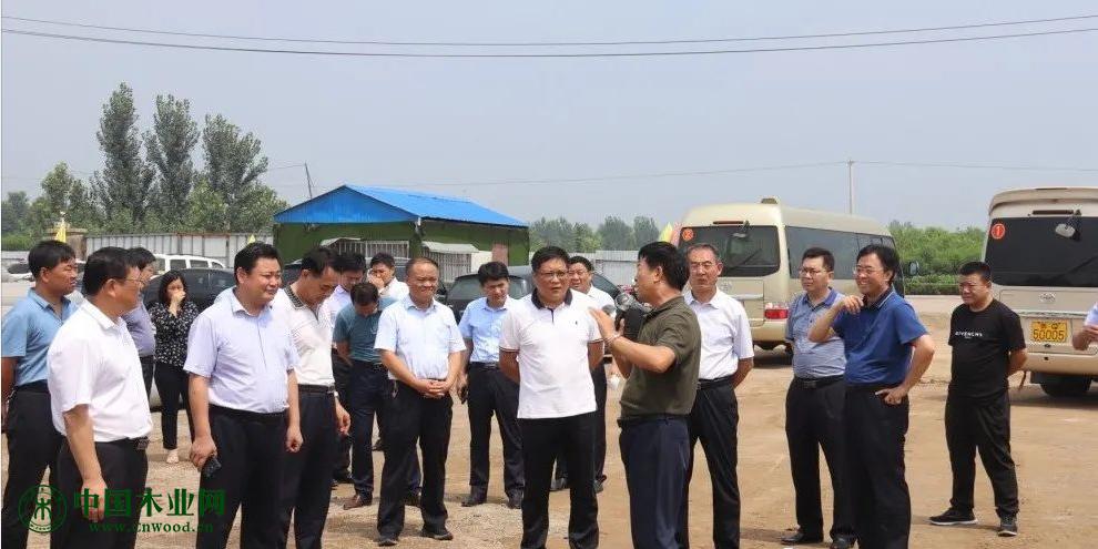 费县木业产业转型升级现场推进会议在探沂镇召开